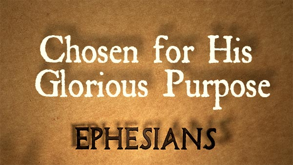 Chosen for His Glorious Purpose